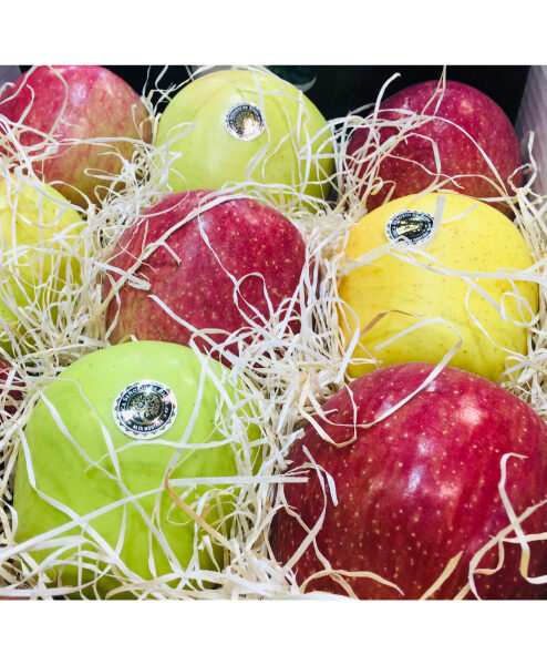 FRUITS AND VEGETABLES GRADING - PACKAGING